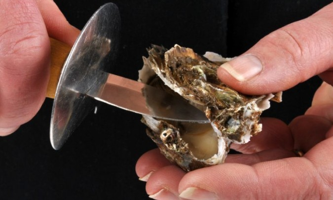 ¿Cómo abrir ostras?